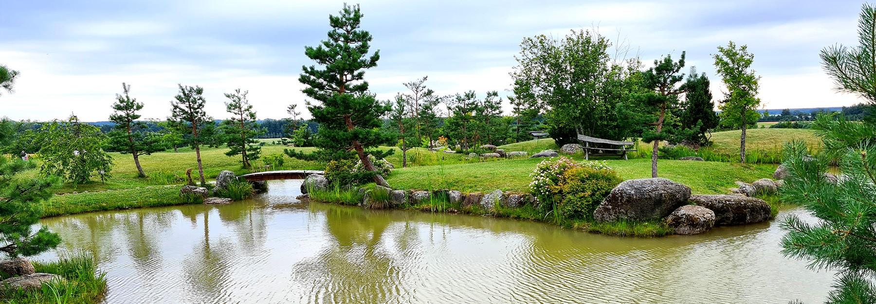 Japoniškas sodas. Protui ir kūnui...